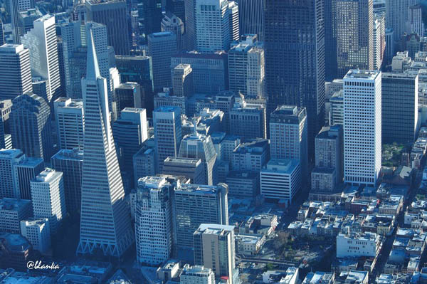 36 san francisco business district